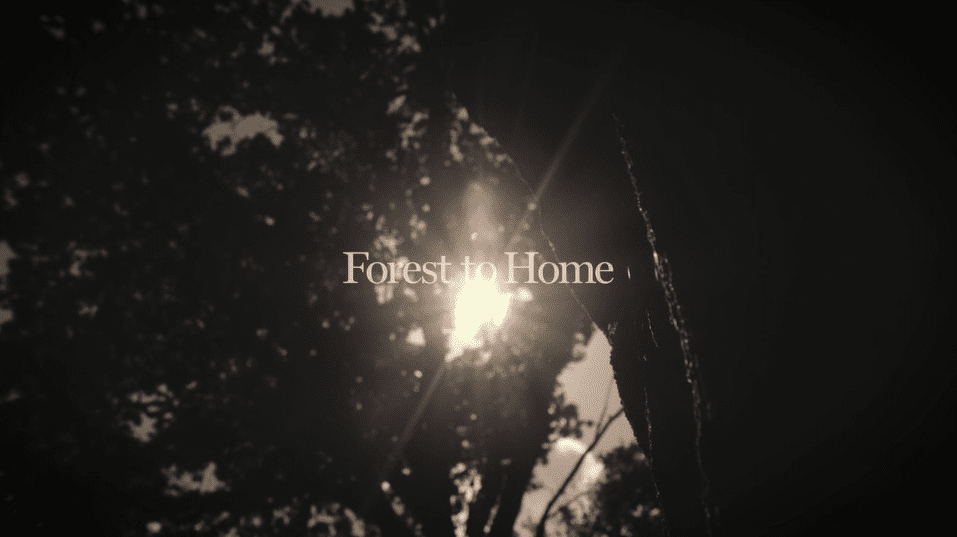 From Forest To Home We Are Jooka